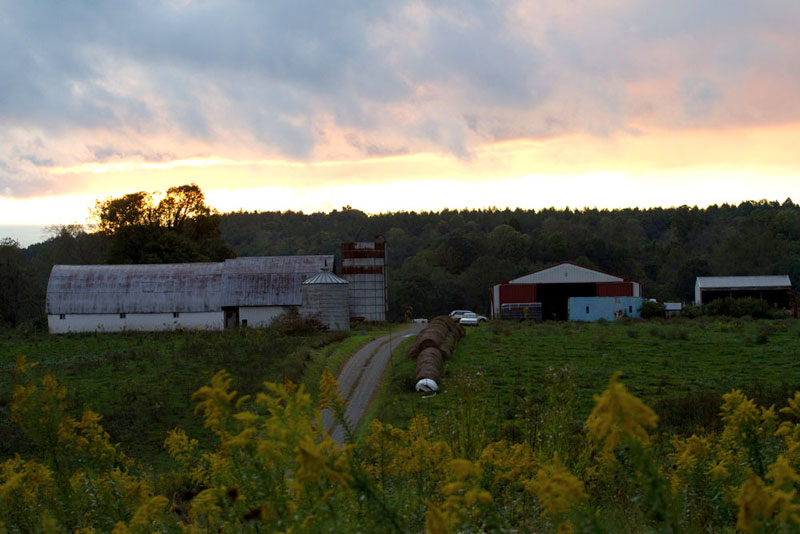 photo of the farm at sunrise